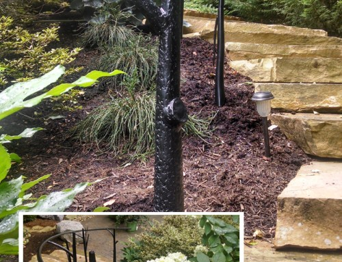 Outdoor Handrails with Tree Posts