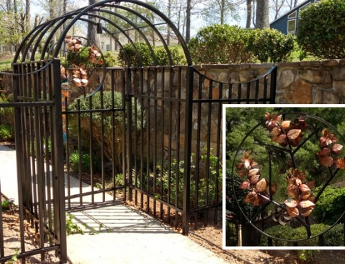 Entry Gate & Fencing with Copper Dogwoods